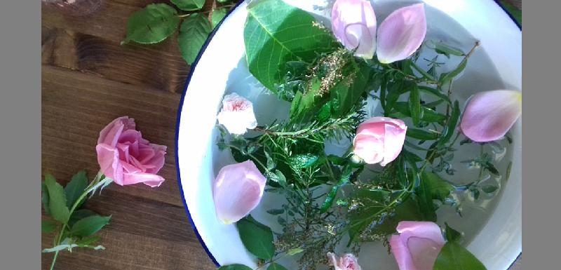 Bacile bianco con fiori e piante in acqua.