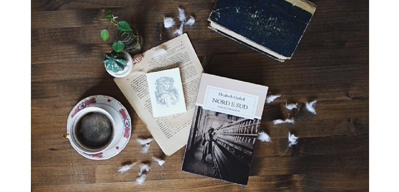 Libro appoggiato su un tavolo con batuffoli di cotone, fogli di libro sparsi, un libro  e un taccuino. Tazza di tè antica e piantina con foglie verdi.