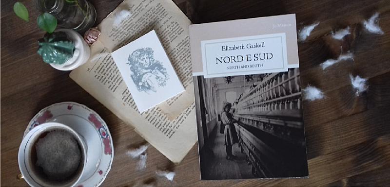 Libro appoggiato su un tavolo con batuffoli di cotone, fogli di libro sparsi e un taccuino. Tazza di tè antica e piantina con foglie verdi.